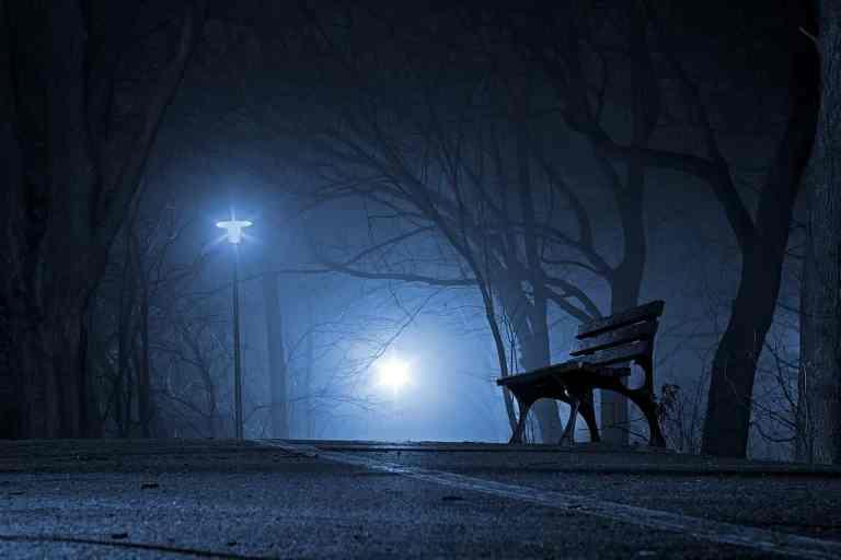 Foggy Night Bench